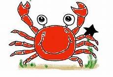 krebs sternzeichen mann horoskop august 2020 monatshoroskop astro echo