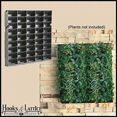 To Make Vertical Garden Indoor Living Wall by Diy Living Wall Vertical Gardening Hooks And Lattice