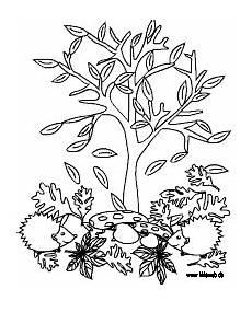 Herbst Baum Malvorlage Herbst Malvorlagen F 252 R Kinder Im Kidsweb De