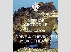 crocodile alligator song