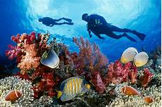 best places to scuba dive around the world dive sites