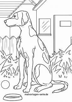 malvorlage dalmatiner hunde ausmalbilder kostenlos