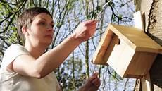 fabriquer un nichoir pour oiseaux comment fabriquer un nichoir pour oiseaux