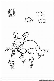 malvorlage hase pdf kinder zeichnen und ausmalen