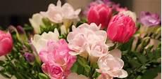 fiori per una donna fiori per compleanno quali scegliere per non sbagliare