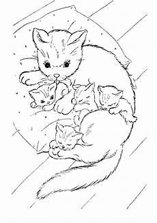 Malvorlage Katze Bunt Pin Auf Cats