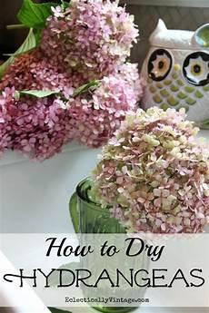 getrocknete hortensien dekorieren drying hydrangeas the right way