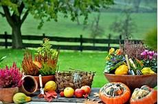 Gartenarbeiten Im Herbst - gartentipps f 252 r den goldenen herbst garten
