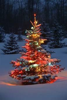 deko weihnachtsbaum weihnachtsbaum mit beleuchtung 40 unikale fotos