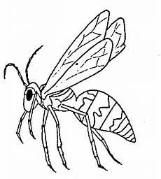 Malvorlagen Insekten In Malvorlage Insekten Malvorlagen 28