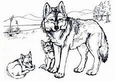 kostenlose malvorlagen wolf wolf ausmalbild ausmalbilder f 252 r kinder malvorlagen