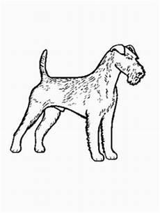malvorlage hund russel hund terrier ausmalbild malvorlage hunde