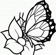 Malvorlage Schmetterling Blume Free Printable Butterfly Coloring Pages For