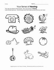 five sense worksheet kindergarten 12646 image result for worksheet sounds surrounding preschool five senses worksheet kindergarten