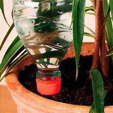 zimmerpflanzen im urlaub bewässern bew 228 sserungshilfe 6 st 252 ck g 228 rtner p 246 tschke