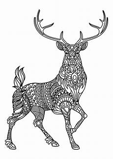 free coloring pages of animals printable 17399 animal coloring pages pdf with images deer coloring pages animal coloring books mandala