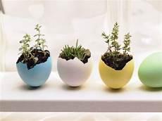 hängende blumentöpfe selber machen sch 246 n bepflanzte eierschalen bunt bemalt ideen selber