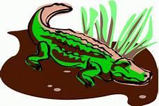 Malvorlagen Tiere Krokodil Farbiges Krokodil Ausmalbild Malvorlage Tiere