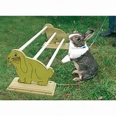accessoires pour lapin nain