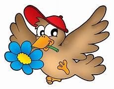 Malvorlage Vogel Mit Blume Vogel Mit Blume Stock Abbildung Illustration Blume