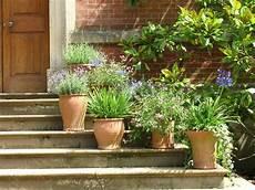 Container Garden Tip Extend Summer Color Espoma
