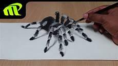 How To Draw 3d Spider Anamorphic Illusion Tarantula