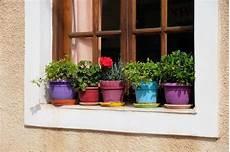 fiori da davanzale vasi da fiori sul finestra davanzale fotografia stock