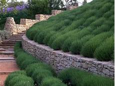 anthony paul landscape design in provence garden