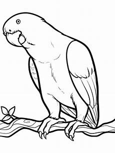 parrot coloring pages and print parrot coloring