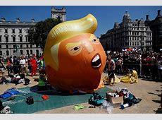pro trump protesters