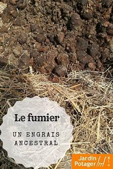 le fumier pour enrichir le sol de potager fumier de