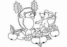 Herbst Ausmalbilder Igel Ausmalbilder Igel 10 Ausmalbilder Tiere Ausmalbilder