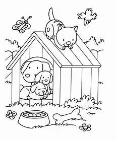 Ausmalbilder Katze Und Hund Cat Birdjpg Animal Coloring Pages For To Print