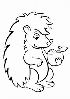 hedgehog coloring pages ausmalbilder igel ausmalbild