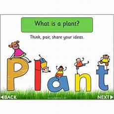 plants lesson ks1 13726 identifying plants year 1 ks1 plants lessons planbee