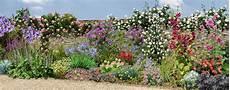 comment fleurir un mur ensoleill 233 au sud dans le jardin