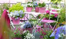 fiori e i fiori per il tuo balcone giardinaggio facile