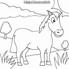 Gambar Mewarnai Kuda Belajarmewarnai Info