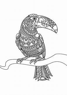 animal coloring pages pdf mandala vogel malvorlagen