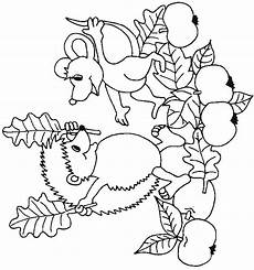 n 32 coloring pages of hedgehogs