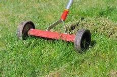 Rasen Umgraben Mit Fr 228 Se 187 So Machen Sie S Richtig
