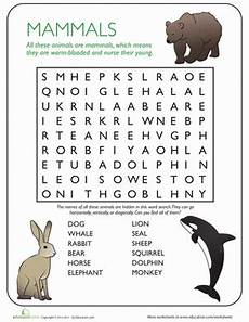 animal needs worksheets 1st grade 13970 animal word search mammals science worksheets animal classification 2nd grade worksheets