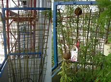 Sichtschutz Garten Selbst Gemacht Sichtschutz Balkon Selber Machen Nxsone45