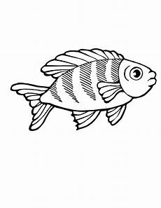 tropical fish coloring pages clipart panda free