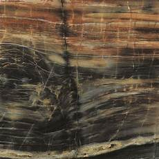 formica 30 in 96 in 180fx laminate sheet in petrified etchings 034741246708000 the