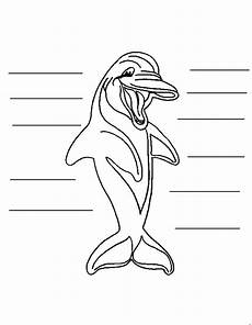delphin malvorlagen malvorlagen1001 de