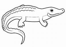 30 krokodil bilder zum ausmalen besten bilder