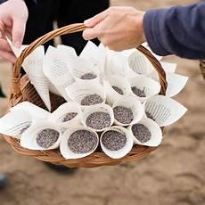 lavande pour mariage cornets de lavande ideas wedding wedding