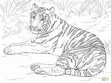 Malvorlagen Tiger Ausmalbilder Tiger Malvorlagen Kostenlos Zum Ausdrucken