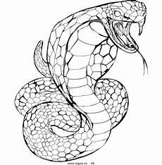 ninjago snake coloring pages at getcolorings free